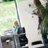 Werner Eichhorst, Verena Tobsch: Flexible Arbeitswelten 2