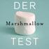 Walter Mischel: Der Marshmallow-Test